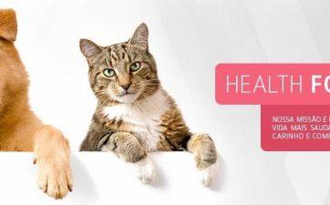 seguro health for pet Corretora de Seguro Belo Horizonte Navarro Corretora