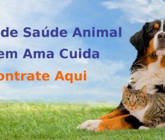 Plano de saúde para cachorro em BH